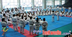 2010-01-17_(21227)x_masTaekwondo_Seminario-Kyu-Hyung-Lee_Chile_03