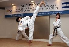 2011-02-28_(22218)x_masTaekwondo_photo-WTF_Exhibicion