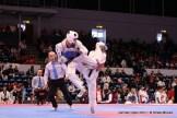 2011-03-13_(22724)x_masTaekwondo_GermanOpen2011_02