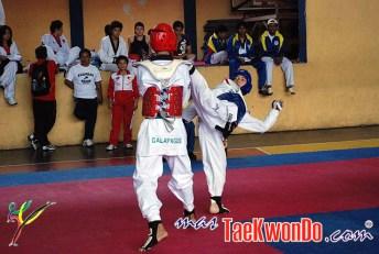 2011-05-20_(26990)x_Campeonato-Nac-Juvenil-Taekwondo-Ecuador_05