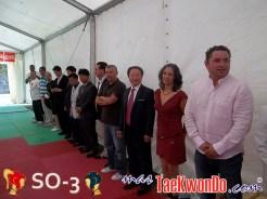 2011-07-10_Taekwondo_SO-3_Dia-6_05