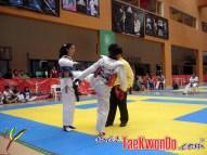 2011-11-07_(32929)x_Festival Mundial de Taekwondo_14