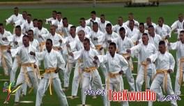 2011-12-12_(zz)x_Taekwondo-en-el-ejercito-colombiano_02