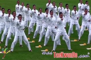 2011-12-12_(zz)x_Taekwondo-en-el-ejercito-colombiano_03