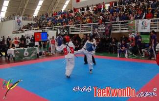 2012-02-06_(35982)x_Festival Internacional de Cintas Negras_02
