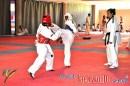 Concentrado Nacional Elite 2012_01