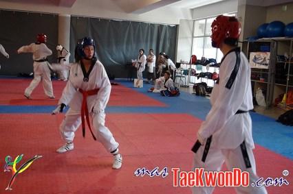 Concentrado Nacional Elite 2012_04
