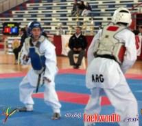 2012-05-08_(39229)x_en combate