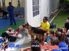 2012-07-12_(41885)x_2012-07-09_SO-4_Riveira_08