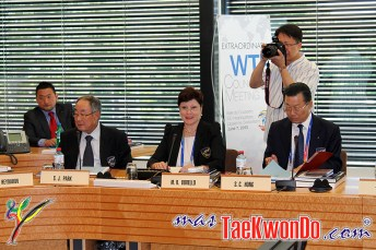 2013-06-07_WTF-Council-Meeting_12