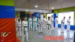2013-11-04_(71695)x_Club Natural Sport_Cinturon_P1070172