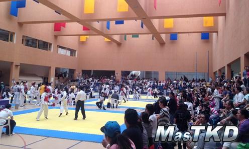 World-Taekwondo-Open_IMG_0378_