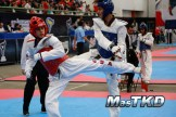 festival de cintas negras taekwondo-15