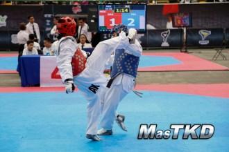 festival de cintas negras taekwondo-2