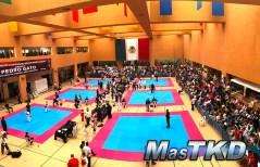 20170418x_Campamento-y-Open-Mundial_Taekwondo_La-Loma_14