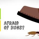 afraid-of-bugs-817×350-817×350