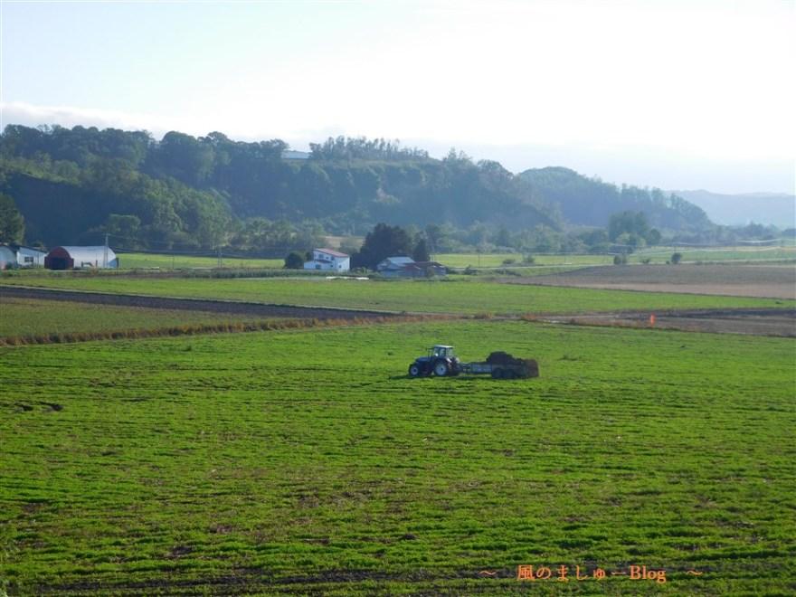 北海道 風景