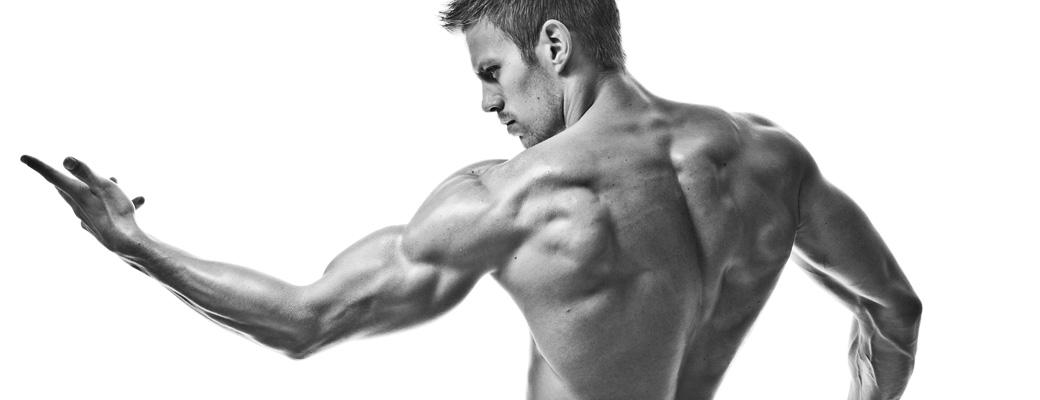 Pamięć mięśniowa i pamięć tłuszczowa