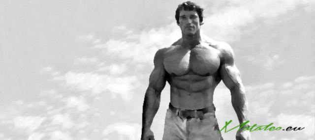 Jak poprawić metabolizm w każdym wieku – Część II