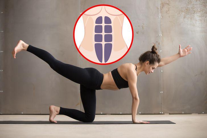 Mięśnie proste brzucha i pleców