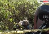 Mayat Tanpa Identitas di Akses Suramadu, Kapolres Bangkalan: Diduga Korban Pembunuhan