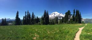 Trail with Mount Rainier in background
