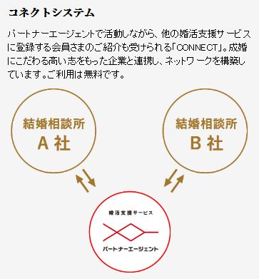 パートナーエージェントのコネクトシップについての公式サイトの画面