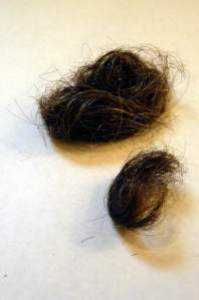 jerry-siegel-hair