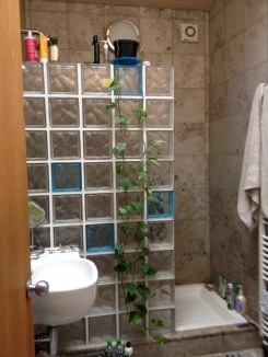 Amazing glass brick shower division design ideas 32