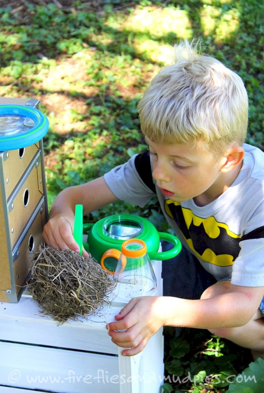 Amazing kid science's lab garden 09