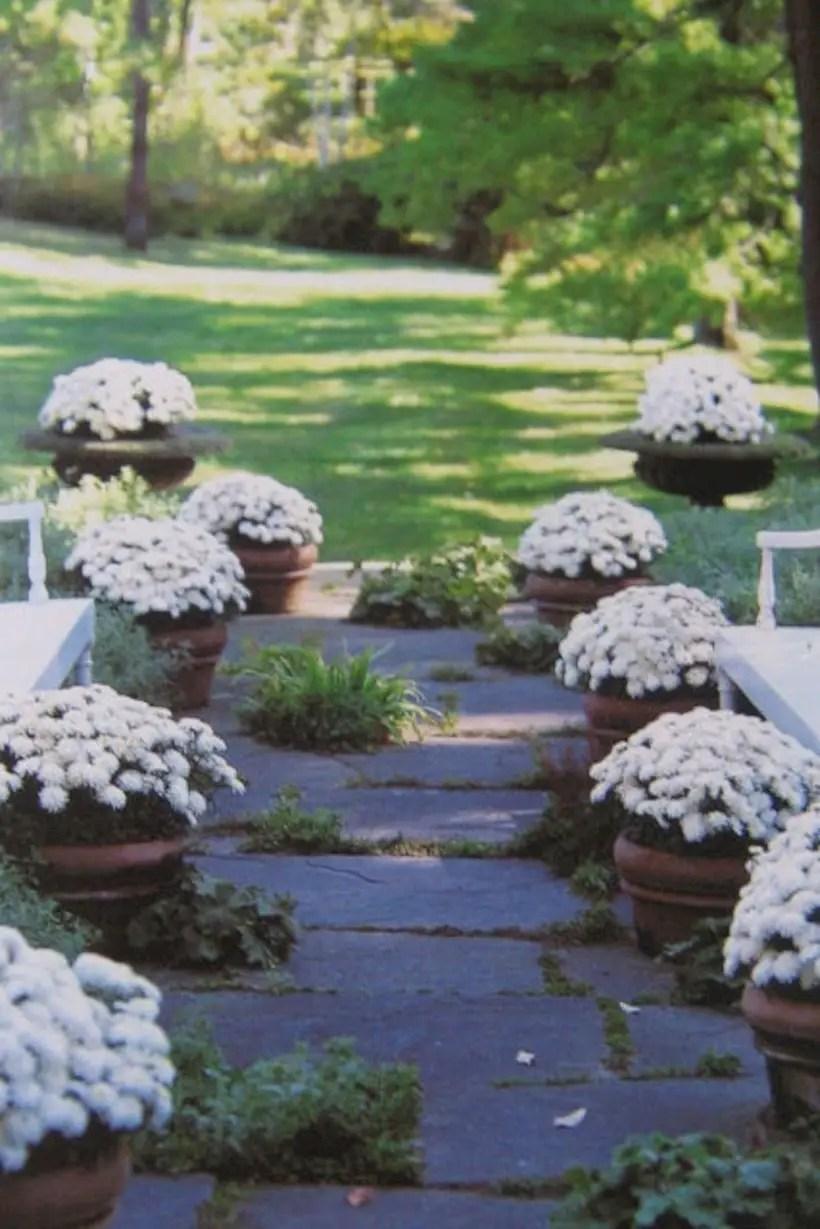 Best garden walkway to envy your visitor 01