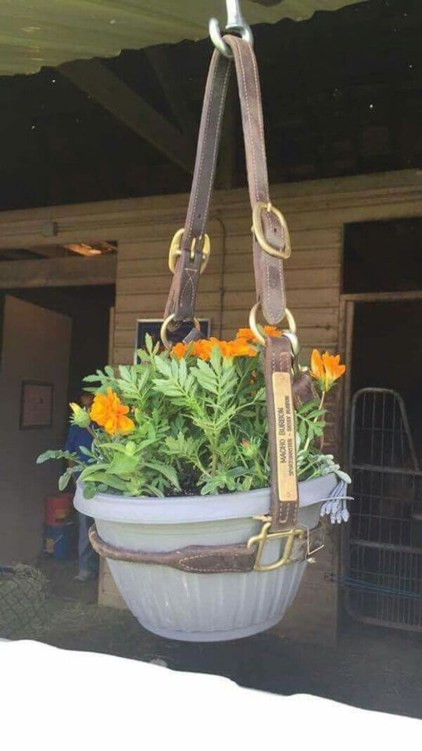 Charming outdoor hanging planters ideas to brighten your yard 07