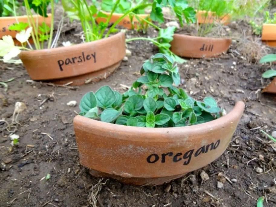 Creative garden potting ideas 05