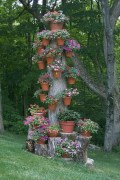 Creative garden potting ideas 14