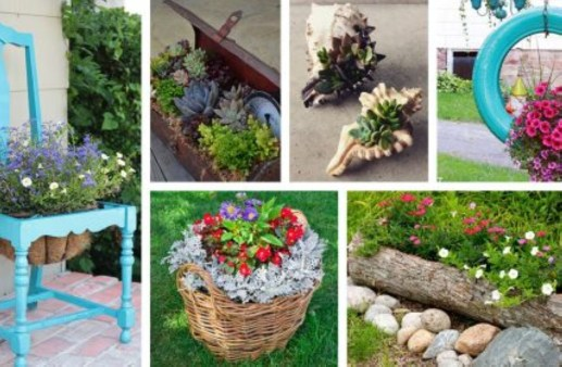 Creative garden potting ideas 20
