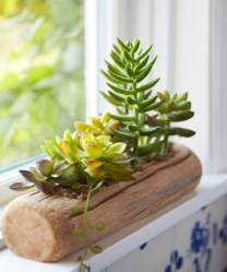 Faux cactus and succulent projects and ideas to decorate your home 08