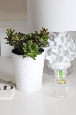 Faux cactus and succulent projects and ideas to decorate your home 16