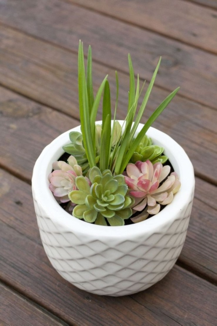 Faux cactus and succulent projects and ideas to decorate your home 20