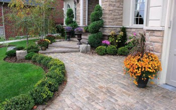 Shrubs-for-edging-and-planters-look-good-in-front-of-the-house