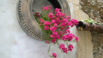 Garden-junk-ideas-reuse-old-tires-wall-flower-planter-pink-geranium