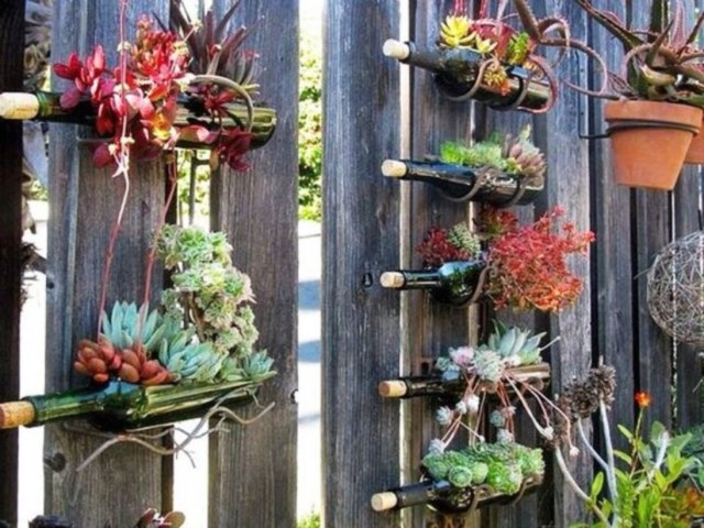 Bottle garden ideas which are borderline genius