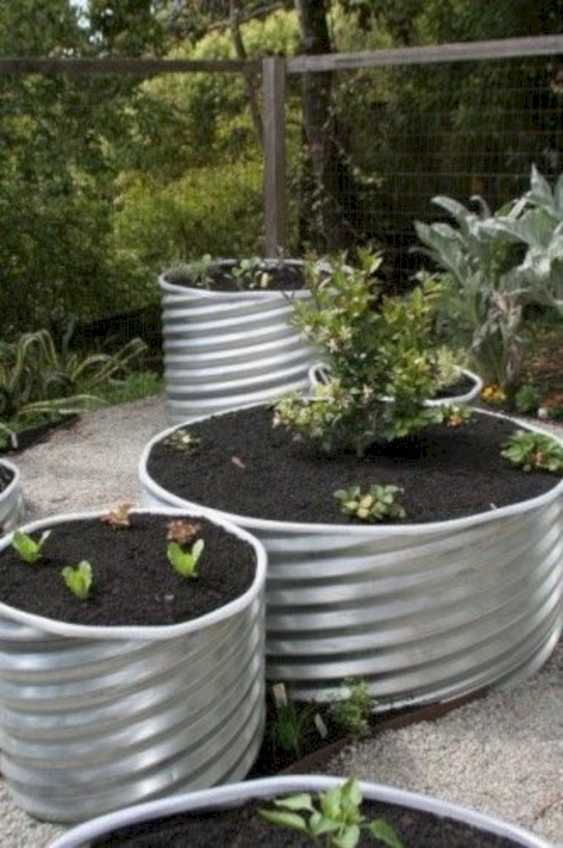 Vegetables in metal culverts