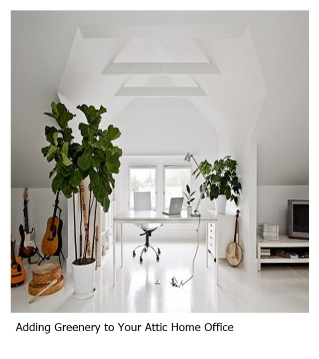 Adding greenery to your attic home office