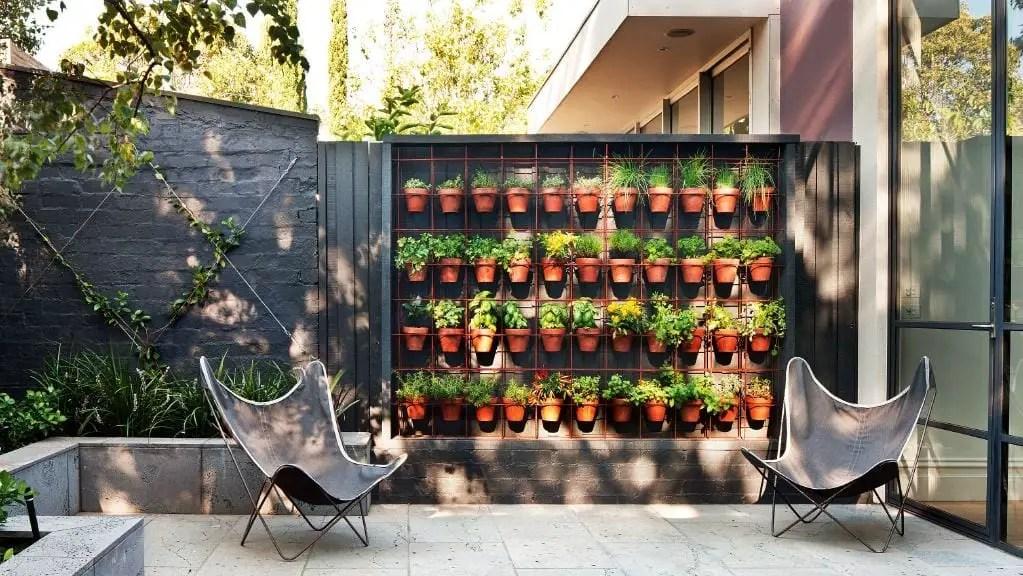 Vertical urban garden