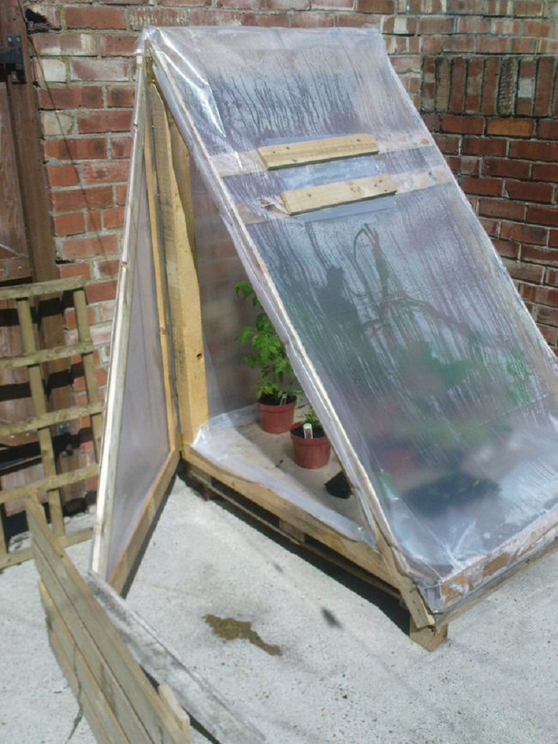 Greenhouse-from-a-pallet