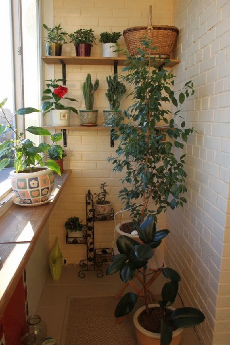 8. vertical garden