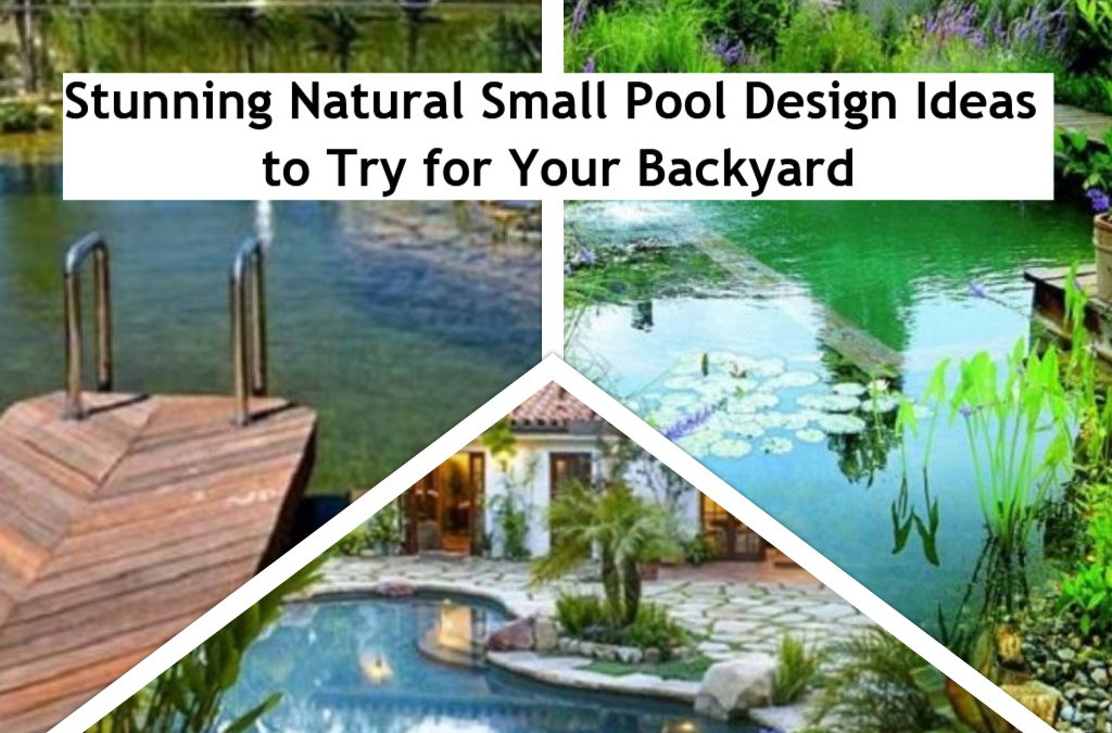 Stunning Natural Small Pool Design Ideas to Try for Your Backyard