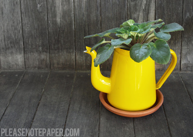 Diy upcycled pitcher planter