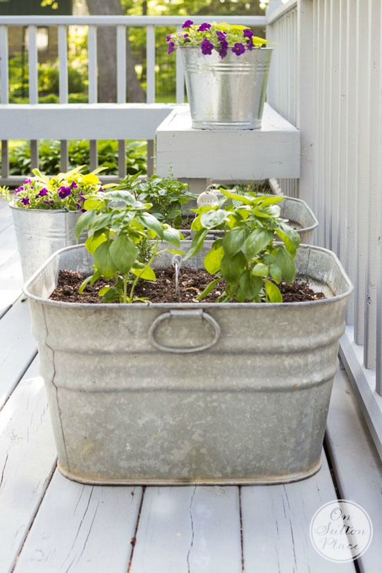 Wash tub herb garden