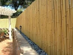 Bamboo fence ideas for small houses 24
